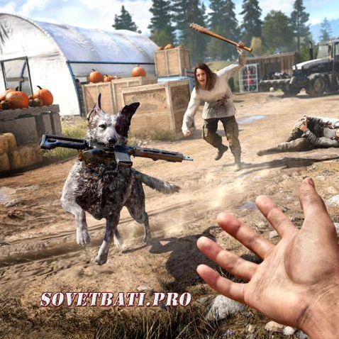 Far Cry 5 Стим рандомный ключ