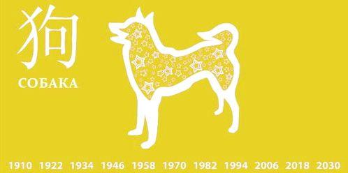 Что дарят китайцы в 2018 год жёлтой собаки